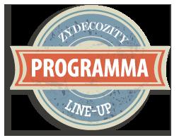 ZZ-programma-icoon
